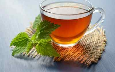 Is green tea good for weight loss ?