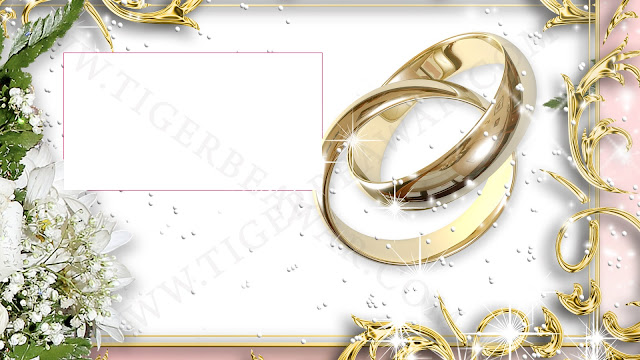 Png Wedding Photo frame background free download hd images for photoshop