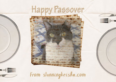 Happy Passover Fotos, Facts and Fun