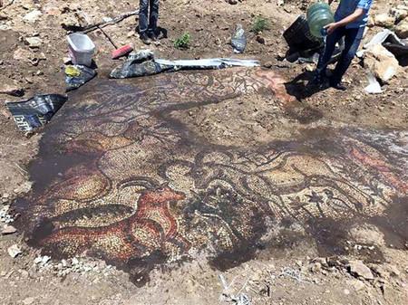 Ρωμαϊκό ψηφιδωτό ανακαλύφθηκε από αγρότες στην Τουρκία