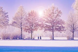 winter wellnes