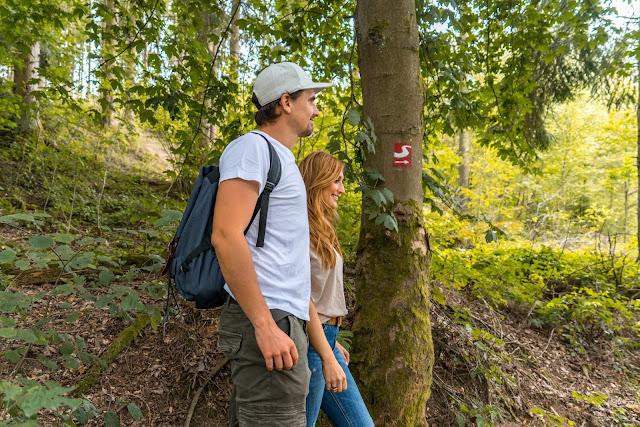Erzquellweg - Mudersbach - Naturregion Sieg | Erlebnisweg Sieg | Natursteig-Sieg 10