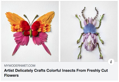 Colorful insects created from fresh cut flower petals, butterfly and beetle