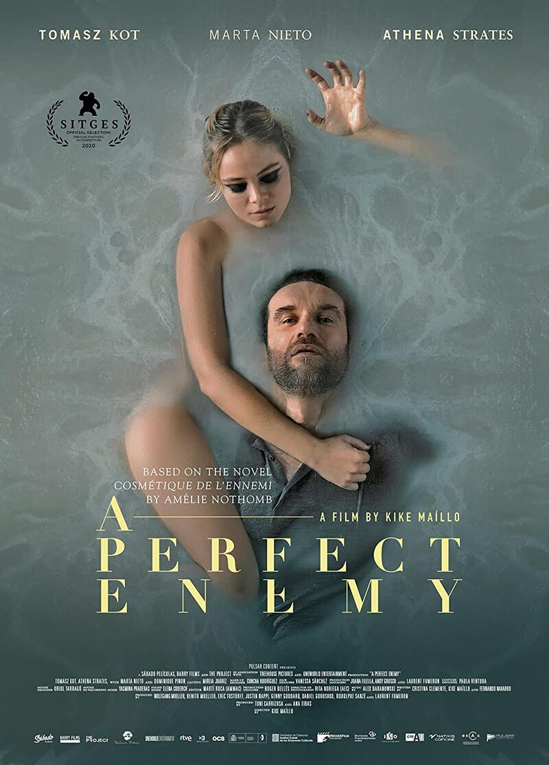 a perfect enemy poster