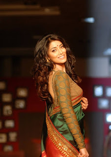shriya saran hottest photos