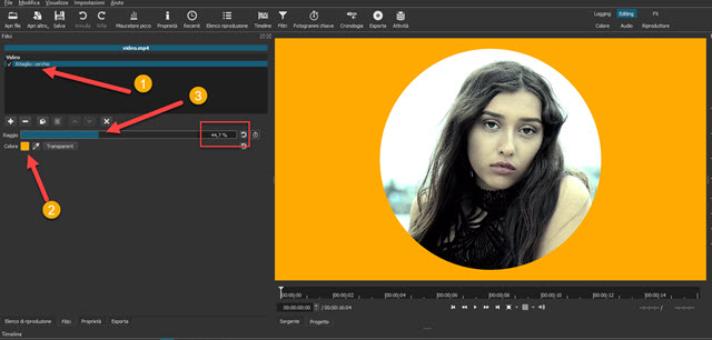 aggiungere filtro ritaglio circolare con colore