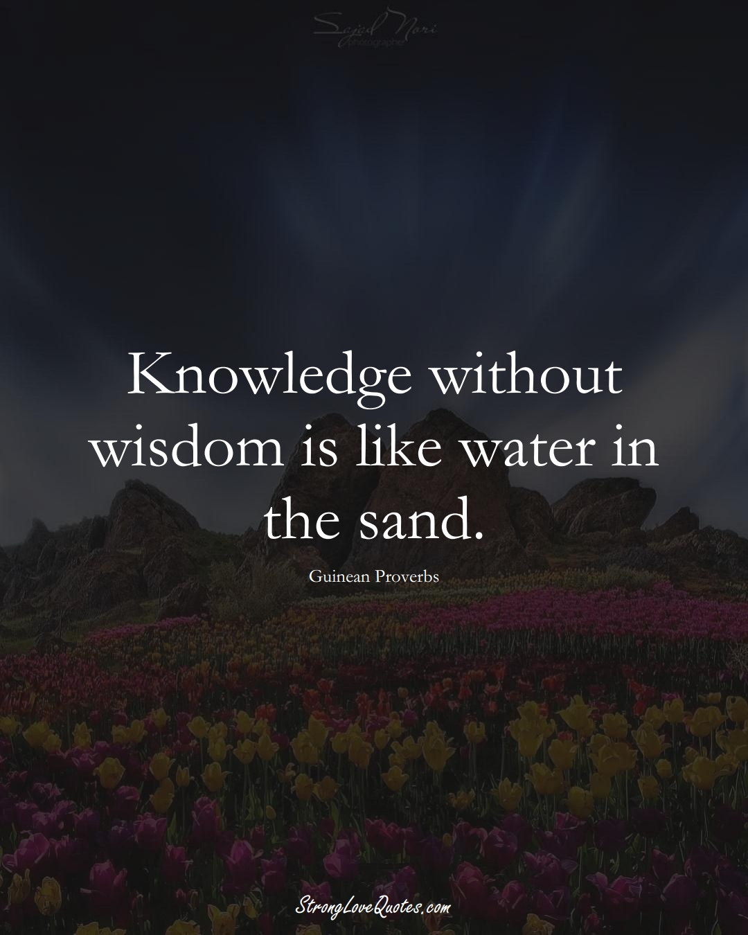 Knowledge without wisdom is like water in the sand. (Guinean Sayings);  #AfricanSayings