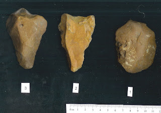 Handaxes made by Homo erectus