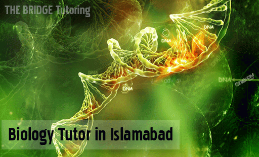 home tutor for biology o-level a-level and Fsc