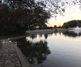 arboretum austin duck pond