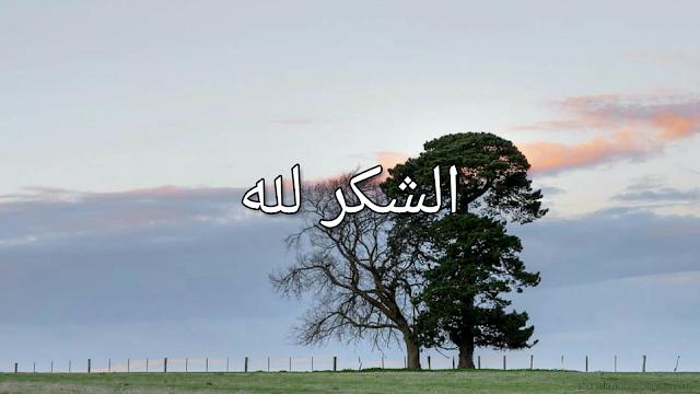 Ashokrulillah Allah bless you