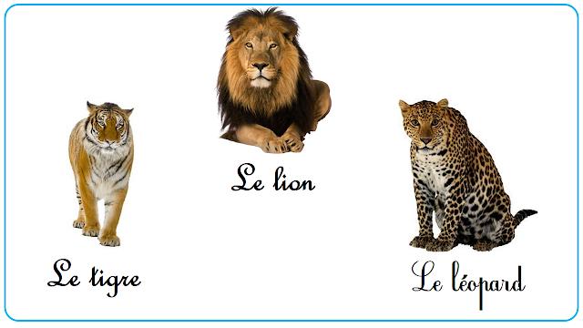 اسماء الحيوانات المتوحشة بالفرنسية