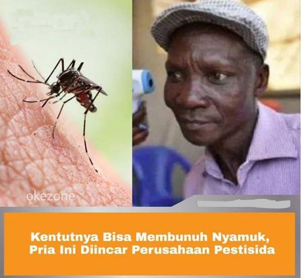 Sperti Racun, Kentut Pria Ini Bisa Bunuh Nyamuk Hingga Serangga Lainnya.