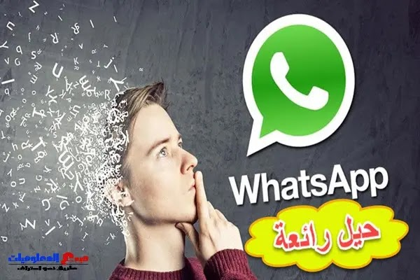 أفضل 30 نصيحة وحيلة لتطبيق WhatsApp يجب عليك استخدامها