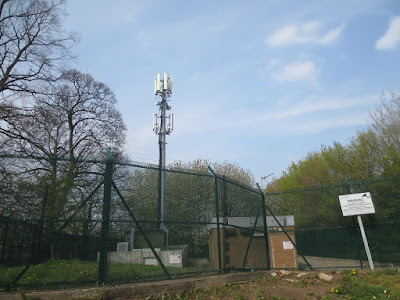 Small-Common-Phone-Mast-EMF-Tower