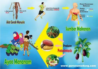hubungan energi, gerak, pernapasan dan nutrisi