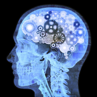 Water - Your Cheap, Effective & Safe Nootropic - Up to 31% Increased Cognitive Performance With 25ml of Plain Water