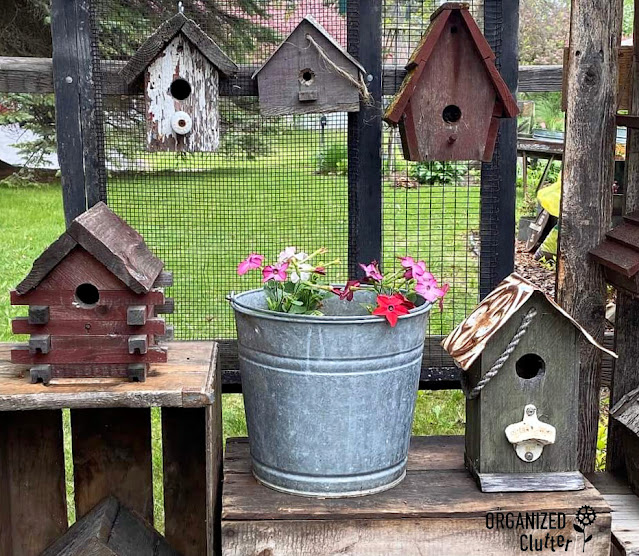 Photo of rustic birdhouses and a pail of annuals display on crates