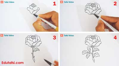 Cara menggambar bunga mawar