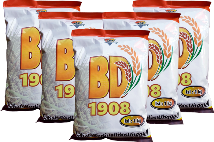 Padi BD 1908, Padi Unggul BD1908, Padi BD1908 Banyuwangi, Padi unggul hasil tinggi, padi unggul berkualitas, benih padi unggul,