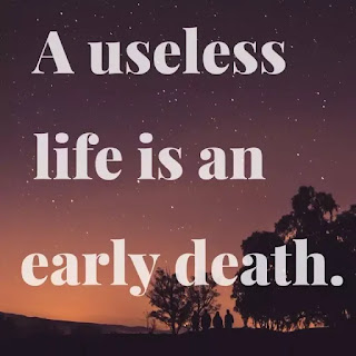 useless life