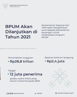 Akses www.kemenkopukm.go.id, Daftar Bantuan UMKM 2,4 Juta
