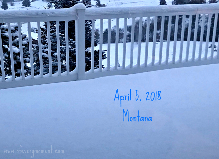 Fresh snow on our deck in April