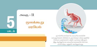 KALVISOLAI ONLINE TEST - CLASS 12 BIOLOGY ZOOLOGY - பாடம் 5 மூலக்கூறு மரபியல் - 1 MARK QUESTIONS