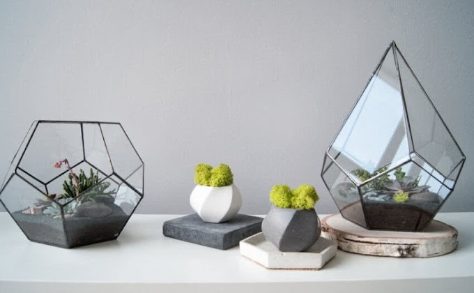 TABLETOP GARDENING FOR OFFICE & HOME