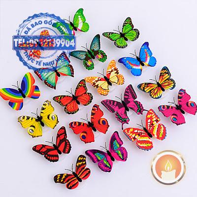Đèn led hình con bướm đổi màu