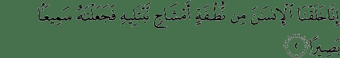 Surat Al-Insan Ayat 2