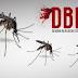 Mengenal Lebih Dalam dengan Penyakit Demam Berdarah (DBD) dan Cara Mengatasinya