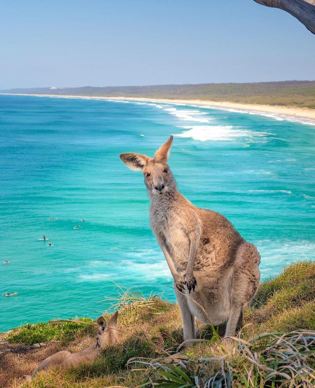 TOURISM AUSTRALIA'S TOP 10 SOCIAL POSTS OF 2020