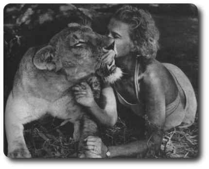 what happened to elsa the lion from born free