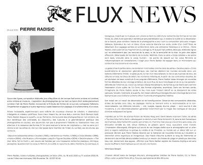 article de véronique bergen à propos de l'exposition de pierre radisic au salon d'art dans fluxnews du 25 août 2020