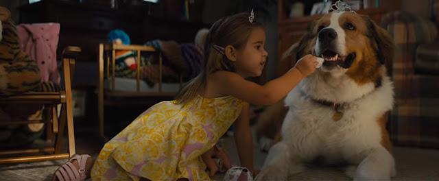 Sinopsis Film A Dog's Journey (2019)