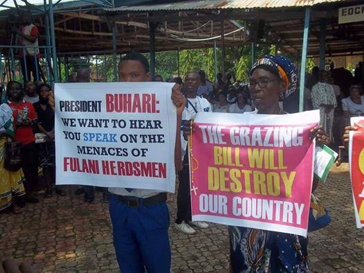 Half-Naked Women Protest Suspected Herdsmen Killings In -6050