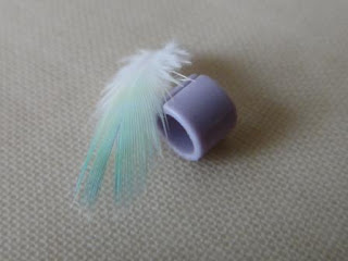Budgie Feather and Leg Ring Keepsake