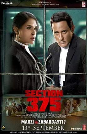 Section 375 Hindi 2019 400MB pDVDRip 480p