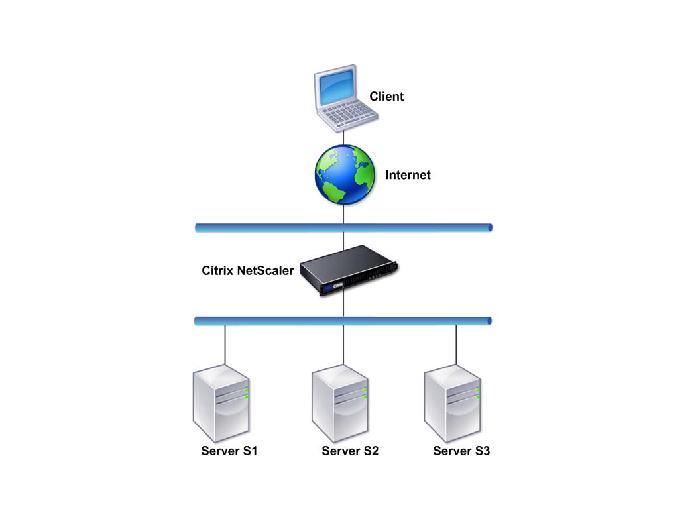Citrix NetScaler Guide: Understanding the Citrix NetScaler