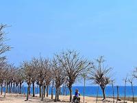 5 Tempat Wisata di Probolinggo Yang Terkenal