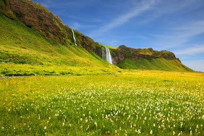 campos verdes y floridos con vistas a una cascada en un soleado día de julio