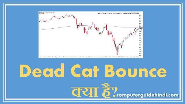 Dead Cat Bounce क्या है?