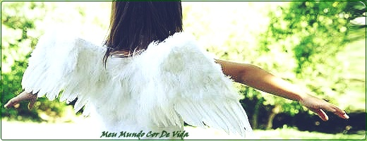 criando asas