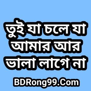 Tui Ja Choli Ja Lyrics (তুই যা চলি যা) Shuvon Ft TahseeNation Officials Song