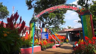 Kebun Bunga Celosia Boyolali