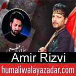 https://humaliwalaazadar.blogspot.com/2019/09/amir-rizvi-nohay-2020.html