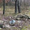 O krzyku, którego nie słychać, czyli śmieci w lesie