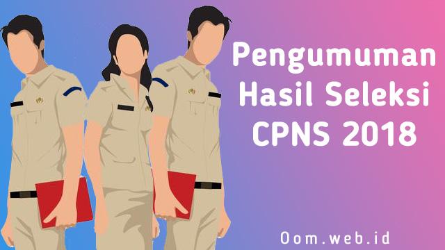Pengumuman Hasil Seleksi CPNS 2018