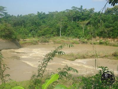 Botekak sungai Bendungan Macan, SubangBotekak sungai Bendungan Macan, Subang